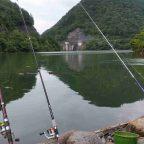 阿多岐ダムで鯉釣りをしてきました。