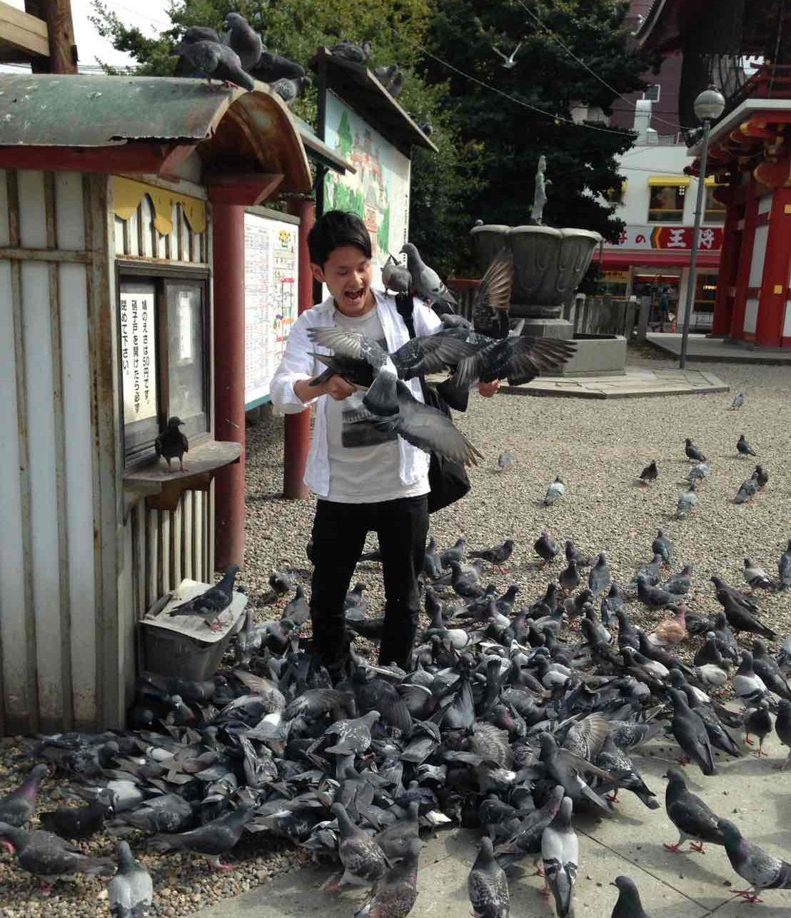 大須観音にて鳩と遊ぶ