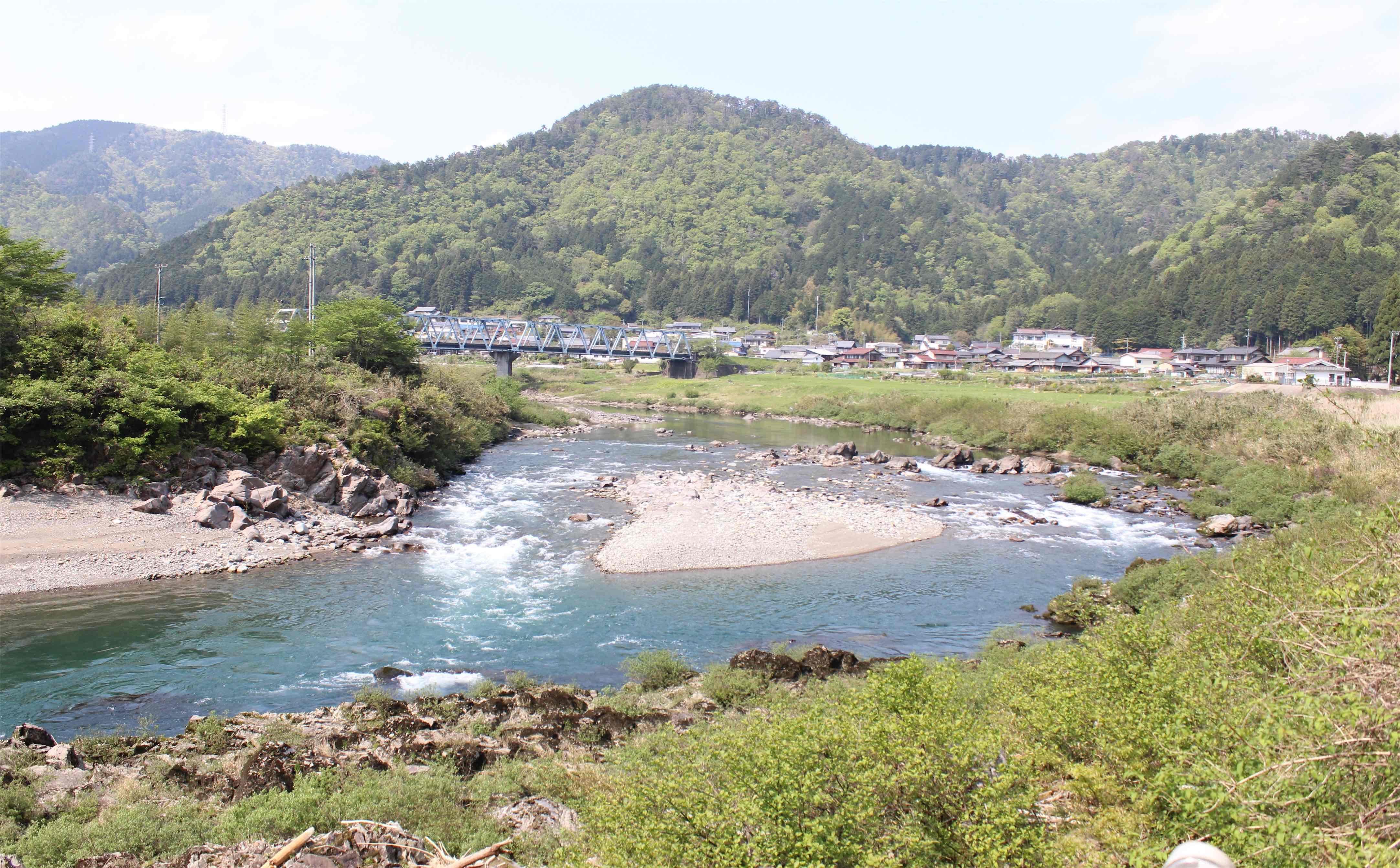 のどかin美濃の県道